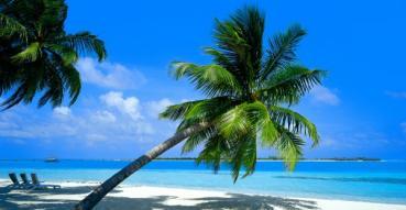 Caraibe pic.jpg