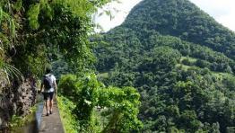 Nord Martinique Pack Eco-Tourisme