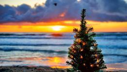 Noël Luxe 5*