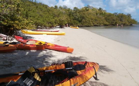 Journée kayak en Martinique