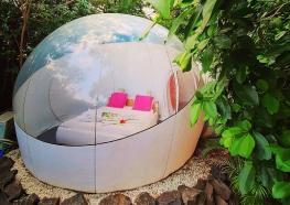 Maison d'hôtes le domaine des bulles lune de miel Martinique (7).jpg