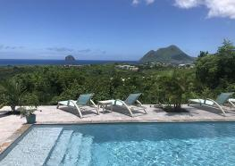 Télétravail en Martinique sous le soleil.jpg